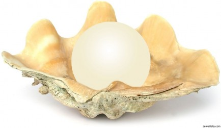 Real Pearl In Oyster Shell