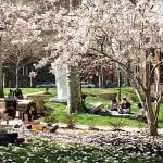 Top 10 Jewelry Design Schools 5 - Pratt Institute